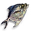 Tw3 fish.png