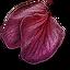 Tw3 ginatia petals.png