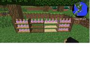 Potion Shelf 2