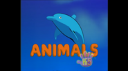Opening So Many Animals