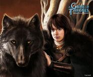 Bran Stark by Alexandre Dainche, Fantasy Flight Games©