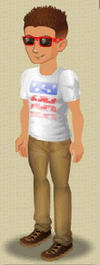 Broad Stripes and Bright Stars.png