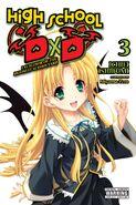 DxD Volume 3 English