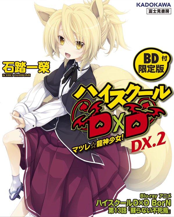 Light Novel DX.2