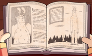 Forest giant book