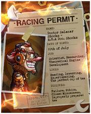 Racing permit doc shocks.jpg