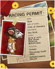 Shoe-driving-permit-facebook-1.jpg