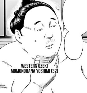 Momohana Yoshimi.png