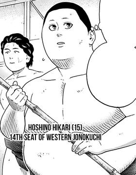 Hoshino Hikari.png