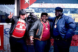 The Fat Boys.jpg