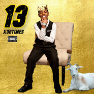 13 Official Cover Art