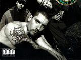 House of Pain (album)