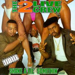 Shake a Lil' Somethin'.jpg