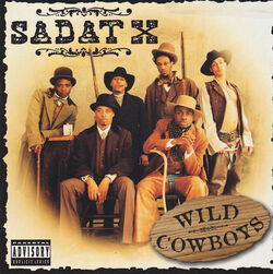 Wild Cowboys.jpg