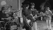 Buffalo Springfield June 18 1967 Monterey Pop Festival