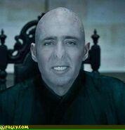 Voldemort cage
