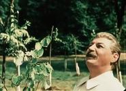 Stalin en Fall of Berlin