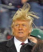 Donald Trump Mazorka