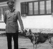 Hitler-blondi-1--644x600