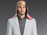 Шейх аль-Газали