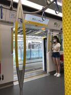 TML Train door 15-08-2020