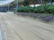 Tram WS Depot Entrance Rail 2