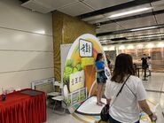 People take photo with Sung Wong Toi open board 13-06-2021(5)