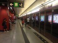 Tsueng Kwan O station platform 15-10-2016