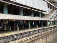 Racecourse platform 24-08-2021(3)