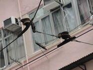 Tram Cable Two