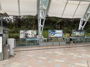 Sunny Bay Disneyland Resort Line platform 09-05-2021