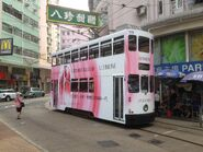 Hong Kong Tramways 175 2