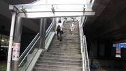 LR 300 Staircase-3