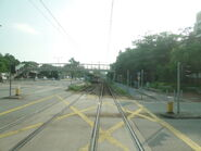 T23 Ping Kwai Rd