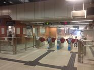 Hang On concourse 12-06-2016(4)