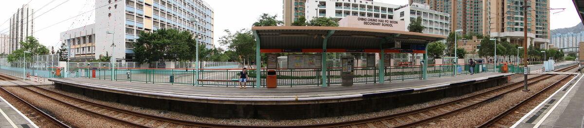 豐景園站月台全景