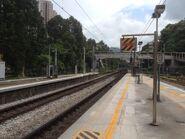 Sha Tin platform 06-06-2015