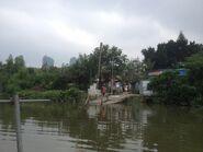 Shan Pui River Pier(Shan Pui Tsuen) 30-04-2016(4)