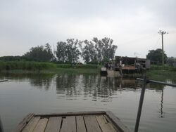 Shan Pui River Pier(Nam Sang Wai) 30-04-2016(1).JPG