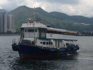 Tsui Wah 28 in Sha Tin Sea