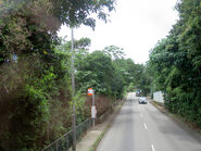 Tai Tam Road near Girl Guides 20180515
