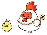 Chicken (SoSFoMT)