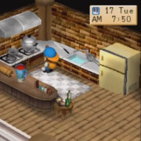 Cooking Recipes Btn The Harvest Moon Wiki Fandom