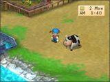 Cow (BTN)
