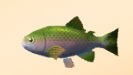 Fishing (SoM)