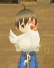 Chicken (ToT)