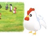 Chicken (Dor)