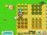 Crops (FoMT)