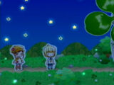Starry Night Festival