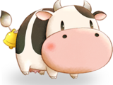 Cow (PoOT)